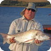 Fish from the Breede river